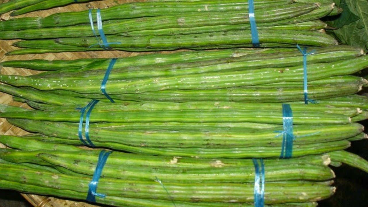 Image result for सहजन वो हरी सब्जी
