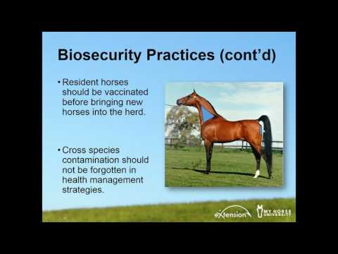 Biosecurity for Horses