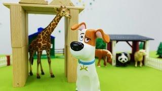 Тайная жизнь домашних животных -  Макс строит дом