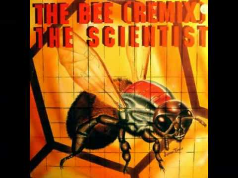 The Scientist - The Bee - Honeycombe Remix