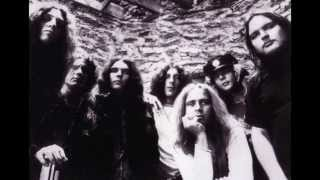 "LYNYRD SKYNYRD  ""One More Time""  (from ""Street Survivors"" Lp)"