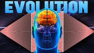 Evolution - Building A Better Neural Network Brain - The Evolution Simulator