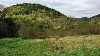 81 51 acres moldrem rd ferryville wi real estate