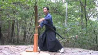 Nukiuchi #2 : Fast Draw cut with one hand by Kashiwaya sensei