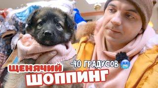 Щенячий ШОППИНГ Дикие морозы Сибири
