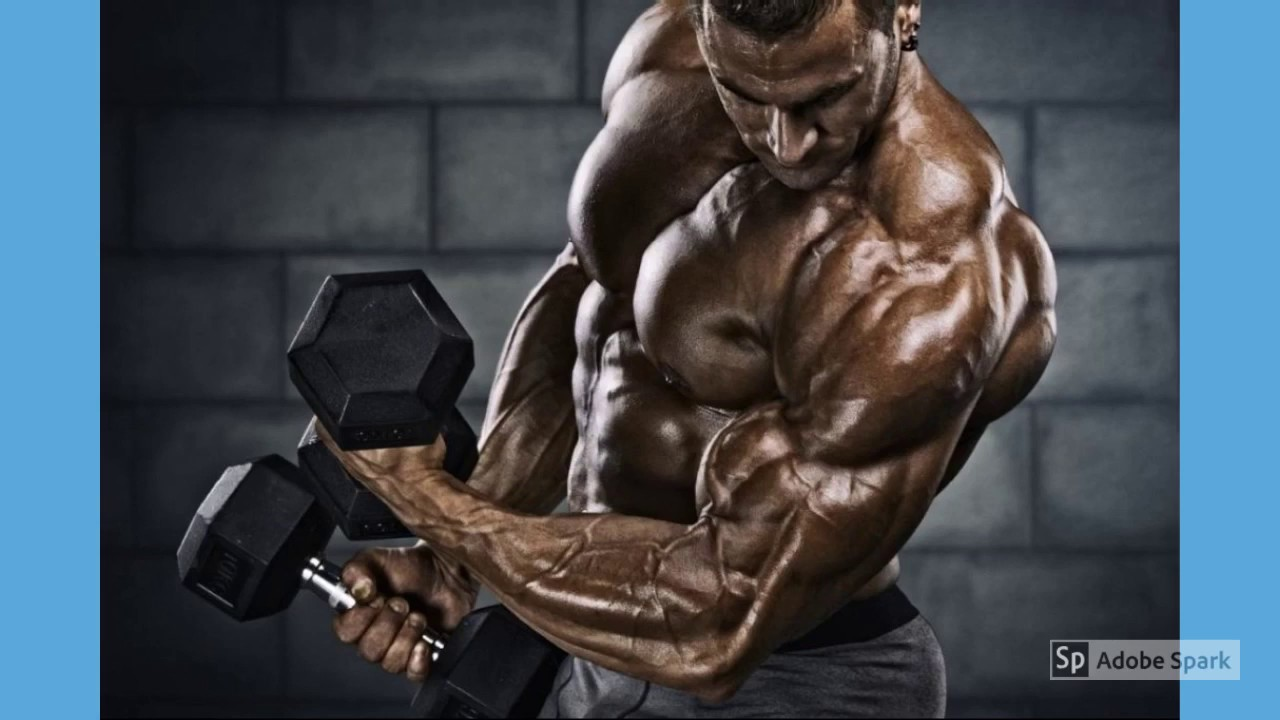 MAXX Power Testosterone Reviews-Side Effects-Price–Ingredients Work Or Not