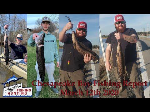 Chesapeake Bay Fishing Report: March 12th 2020