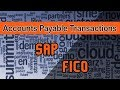 SAP FICO | Basics Concept and Process Flow Within Account Payable | Accounts Payable Transactions