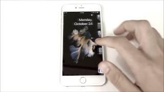 видео Почему Айфоны на Алиэкспресс продают без отпечатка пальца?