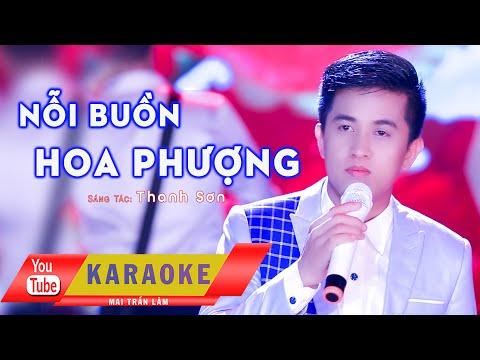 Karaoke II Nỗi Buồn Hoa Phượng II Mai Trần Lâm II Beat Gốc +1 Am