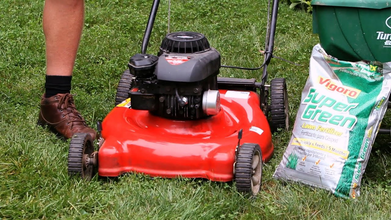 How to Mulch Your Lawn
