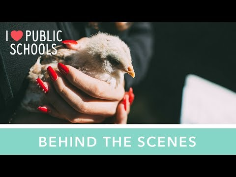 Behind the scenes: Urban Agriculture Academy