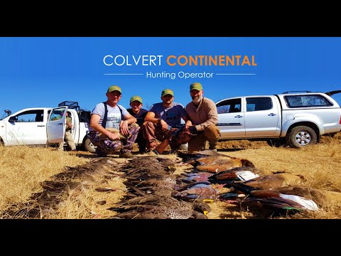 WATERFOWL HUNTING SOUTH AFRICA 2018