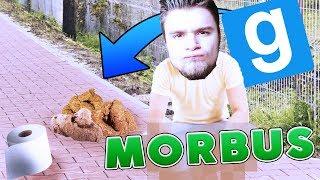 UDOWADNIAM NIEWINNOŚĆ ROBIĄC KUPĘ!   Garry's mod [#796] - MORBUS [#6]