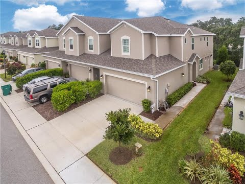 443 Harbor Springs Drive Palm Harbor HARBOR SPRINGS TOWNHOME #1 Agents The Duncan Duo