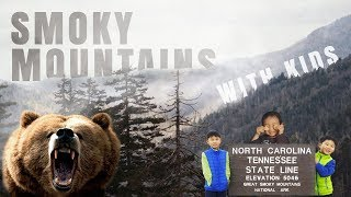 Great Smoky Mountains National Park with Kids | Family, Kids Vlog
