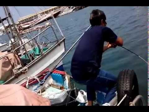 梧棲港中大魚飲恨斷線 - YouTube