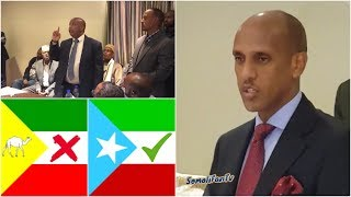 Mustafe Cagjar, Calanka iyo Magaca DDSI waa Labadalayaaa | Madaxweynaha cusub ee Somali Galbeed