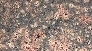Индийская гранитных плит,гранитная плитка для пола(, 2012-12-15T15:26:12.000Z)