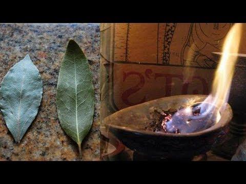 Как поджечь лавровый лист в доме