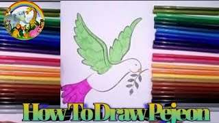 How To Draw Pejeon