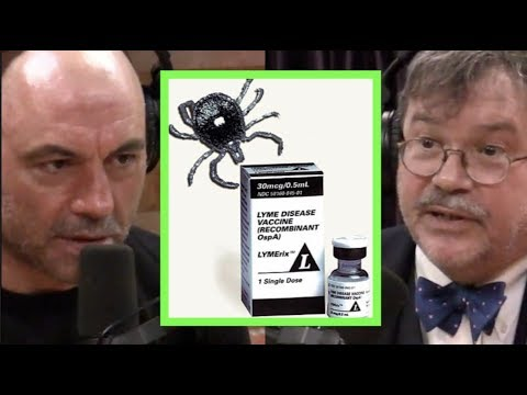 Why the Lyme Disease Vaccine Was Pulled | Joe Rogan & Peter Hotez
