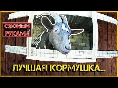 Как сделать ясли для коз