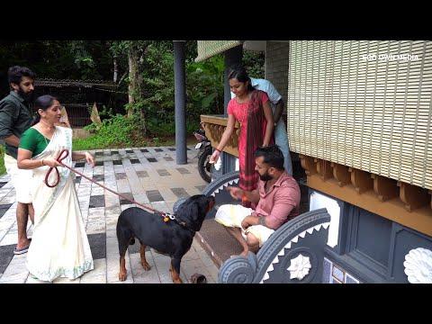 പാപ്പം തിന്നാൻ കൈ കൊട്ടുന്ന Rottweiler ഡോറയുടെ വിശേഷങ്ങൾ | Viral Dog Dora Rottweiler