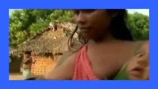 Cute Monkey Feeding On Humans A Woman Is Breastfeeding Monkey