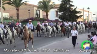 Romeria de San Isidro, Montellano 2014-1ªp.JSillero