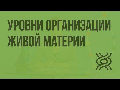 Главные правила ОБЖиз YouTube · С высокой четкостью · Длительность: 4 мин53 с  · Просмотры: более 1000 · отправлено: 09/10/2016 · кем отправлено: InternetUrok.ru