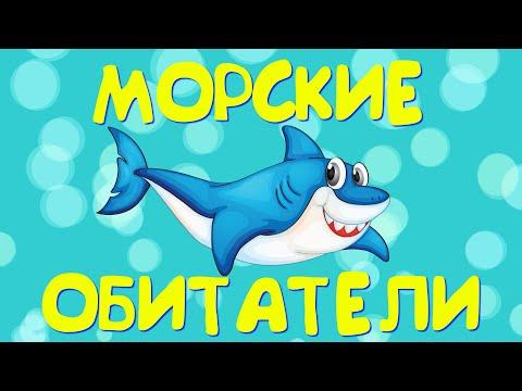 Морские обитатели мультфильм