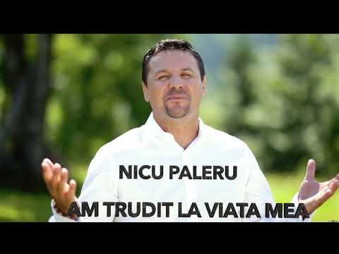 Nicu Paleru - Am trudit la viata mea [ Oficial Video ] 2019