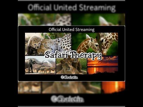 safari-pals-&-favorite-destinations----join-us-live