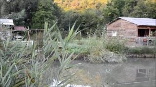 Рибалка в Криму, Озеро село Голубинка Бахчисарайського району