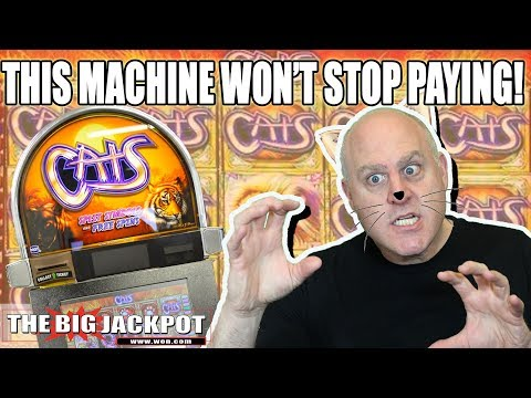 MEGA WIN$ 🙀High Limit Cats Slot Machine - The Big Jackpot - 동영상