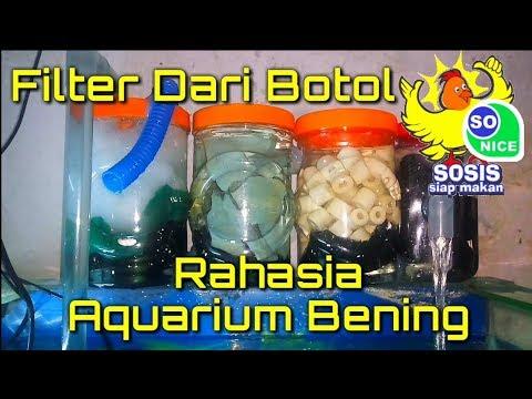 Cara Membuat Filter Aquarium Dari Botol