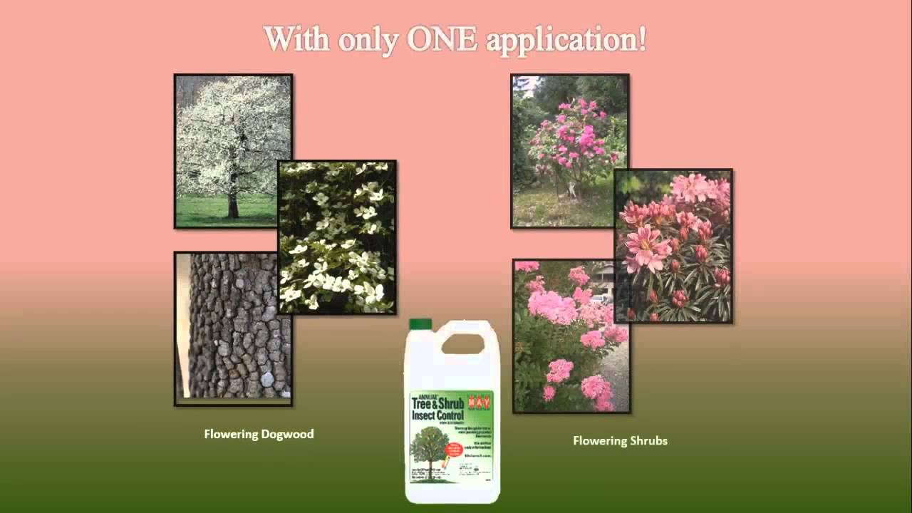 Earl May Garden Center Annual Tree and Shrub Insect Control