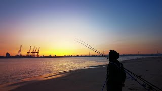 I M BACK Thornback Rays Fishing Perch Rock River Mersey BLANKED