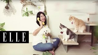 愛動物特輯 | 動物溝通師 Leslie