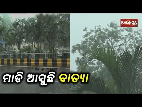 Deep depression in Bay of Bengal set to intensify into Cyclone | Kalinga TV