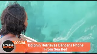 Dolphin Retrieves Dancer