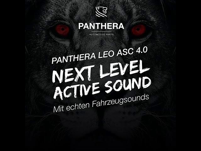 PANTHERA LEO 4.0 - next level activesound
