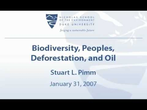 Biodiversity, Peoples, Deforestation, and Oil