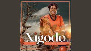 Xigodo