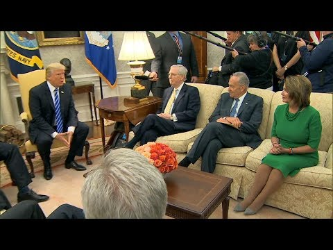 President Donald Trump strikes a deal with Democrats