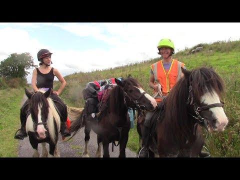 2-tägiger Wanderritt in Irland mit Packpferd - wir testen unsere Ausrüstung