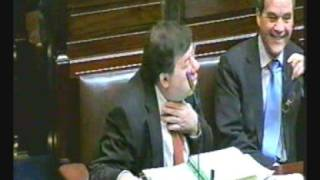 Funny Dail Eireann Debate Part 3 (Voice Over