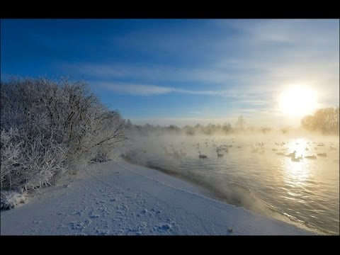 Taymyr Lake (Peninsula - Russia) Travel