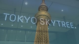 Tokyo SkyTree, World's Tallest Tower, Tokyo, Japan ( HD )
